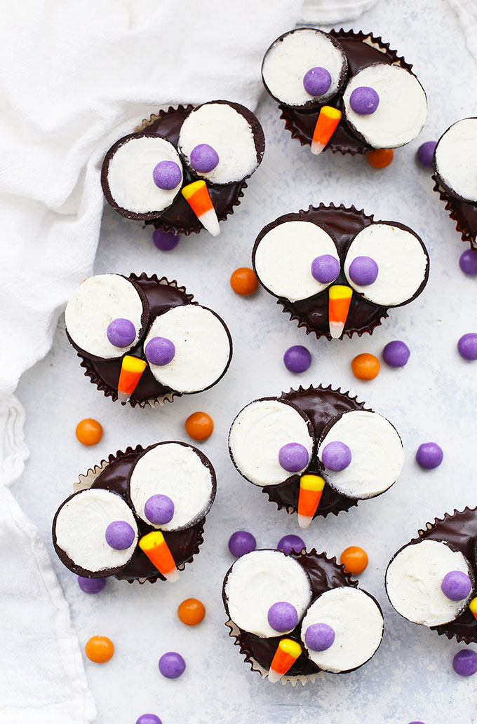Overhead view of Gluten Free Dairy free Owl Cupcakes