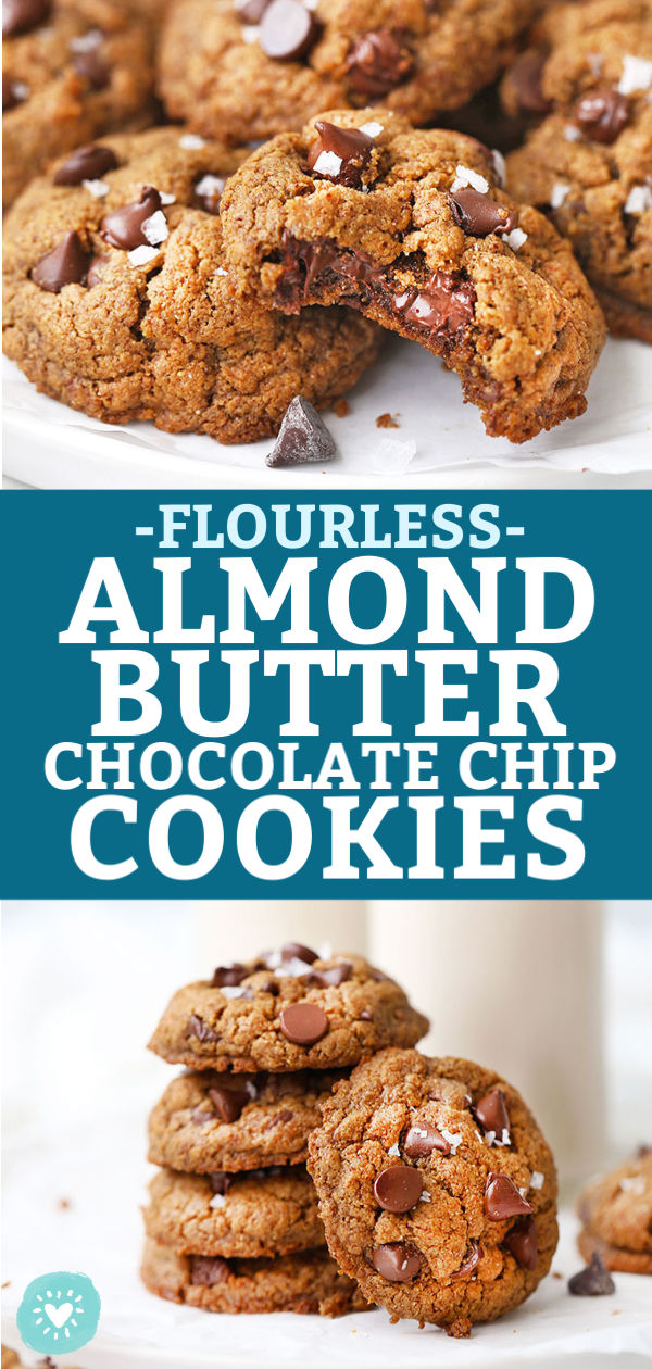 Gluten Free & Paleo Flourless Almond Flour Chocolate Chip Cookies from One Lovely Life