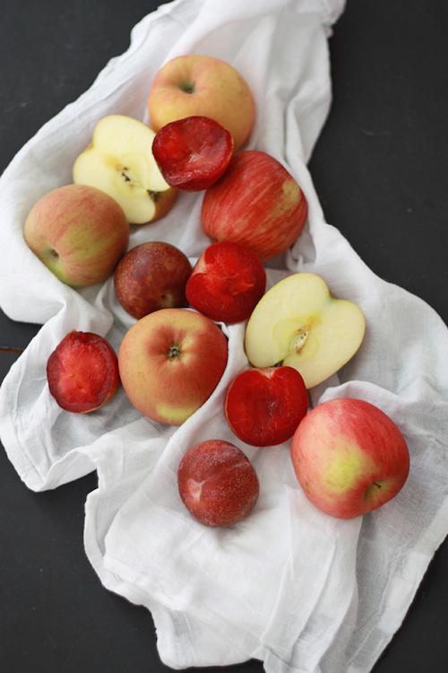Plum Applesauce // One Lovely Life
