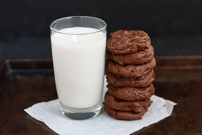 Double Chocolate Cookies - These are grain free AND dairy free! from www.onelovelylife.com