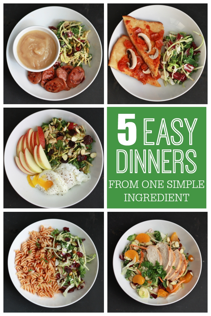 5 Easy Dinners from One Easy Ingredient! from www.onelovelylife.com