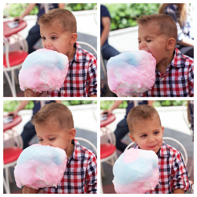 Five Fact Friday - Cotton Candy is a dream come true.