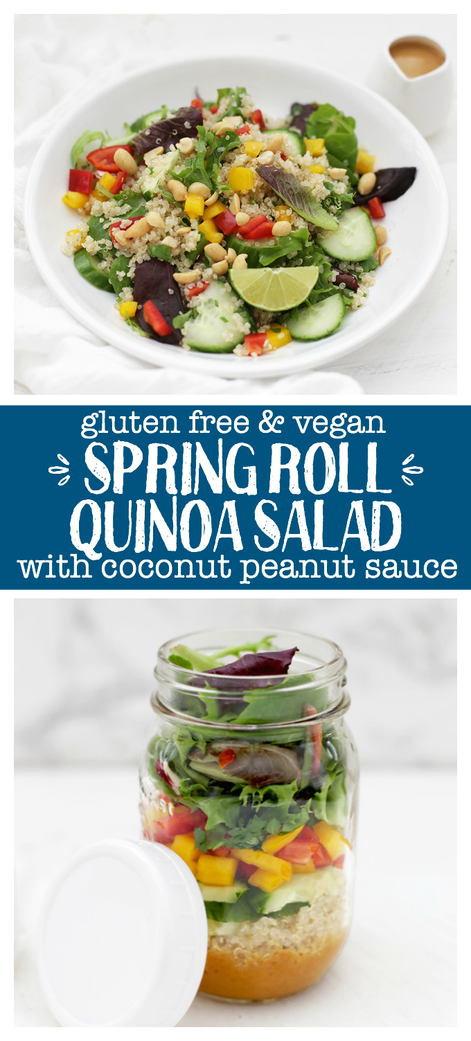 Spring Roll Quinoa Salad - This bright, colorful salad is perfect for meal prep. It's loaded with plant-powered goodness and can be made ahead for lunches during the week! (Gluten Free & Vegan)
