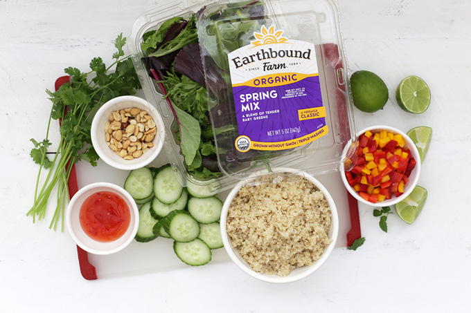Everything you need to make an amazing Spring Roll Quinoa Salad. (Gluten free & Vegan!)