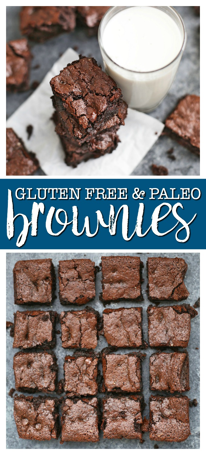 The Perfect Gluten Free & Paleo Brownies -- Fudgy, rich and delicious all without gluten, grains, or dairy!