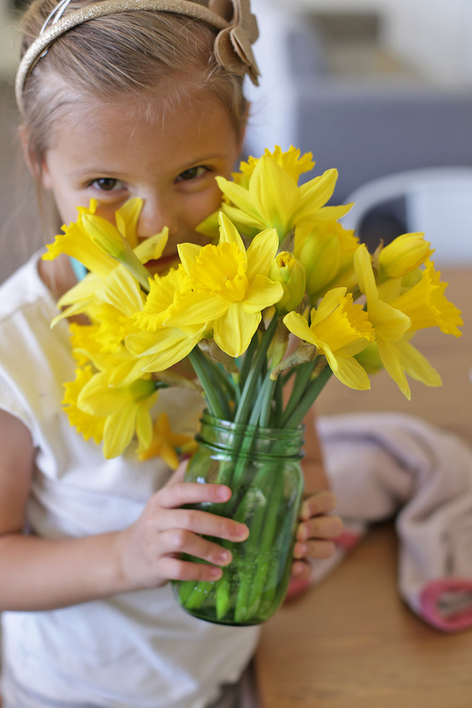 Five Fact Friday - daffodils.