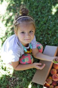 Five Fact Friday - Peach Picking