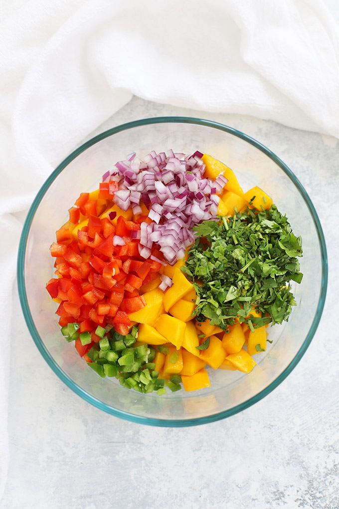 Ingredients for Fresh Mango Salsa - Diced Mango, minced jalapeño, fresh cilantro, diced red bell pepper, and minced red onion.