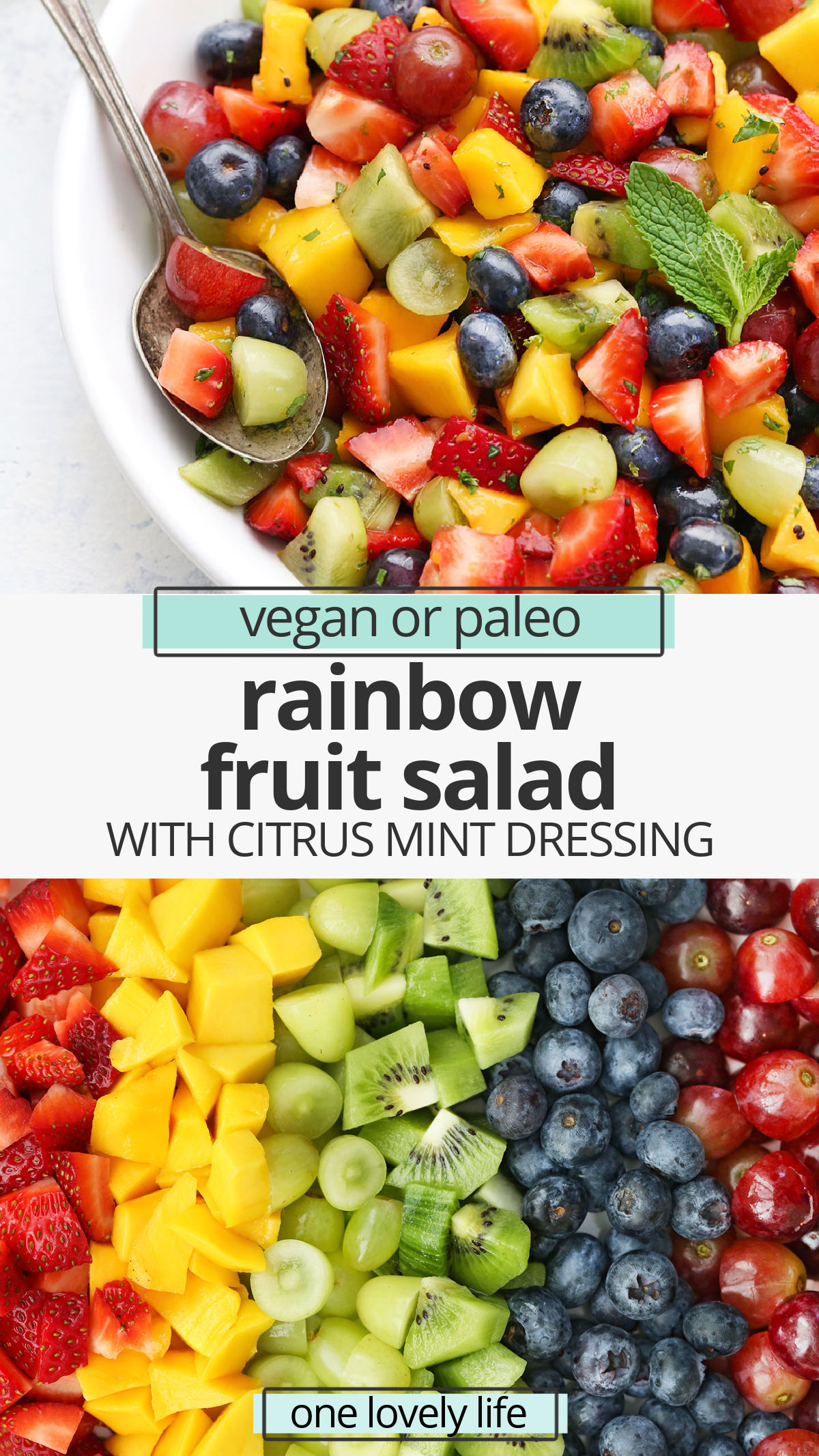 The Best Rainbow Fruit Salad with Citrus Mint Dressing - This rainbow fruit salad is always a favorite with kids and grown-ups. Perfect for picnics, potlucks, brunches, barbecues, and more! (Gluten free, paleo & vegan friendly) // rainbow fruit salad // honey mint dressing // citrus mint dressing recipe // fruit salad with dressing // the best fruit salad recipe #fruitsalad #rainbow #rainbowfood #rainbowparty #rainbowfruitsalad #citrus #mint #brunchrecipes
