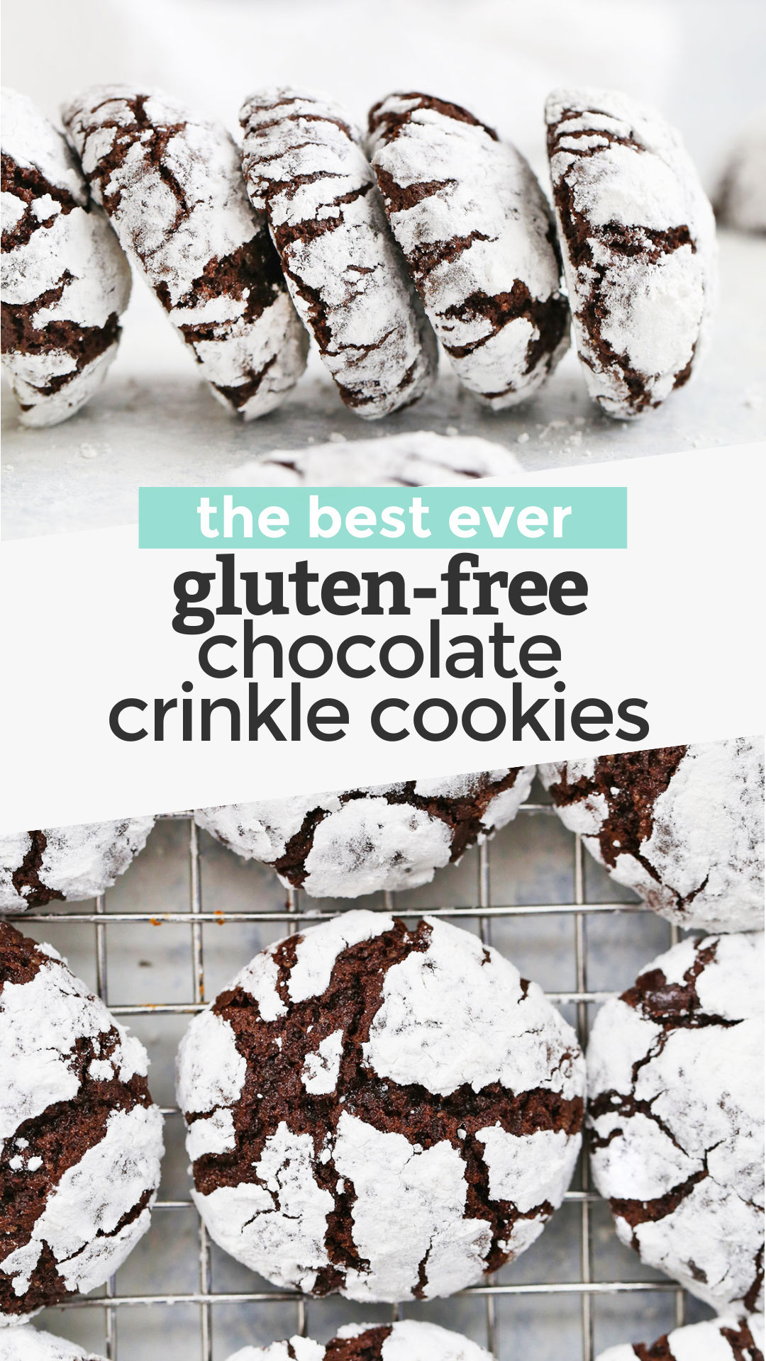 Gluten-Free Chocolate Crinkle Cookies - These gorgeous gluten-free crinkle cookies are ultra-fudgy and absolutely delicious! Perfect for the holidays or your next chocolate craving. (Gluten-Free & Dairy Free) // Crinkle Cookies Recipe // Chocolate Crinkle Cookies Recipe // Gluten Free Christmas Cookies // #cookies #chocolate #crinklecookies #christmascookies #chocolatecookies #glutenfree #dairyfree