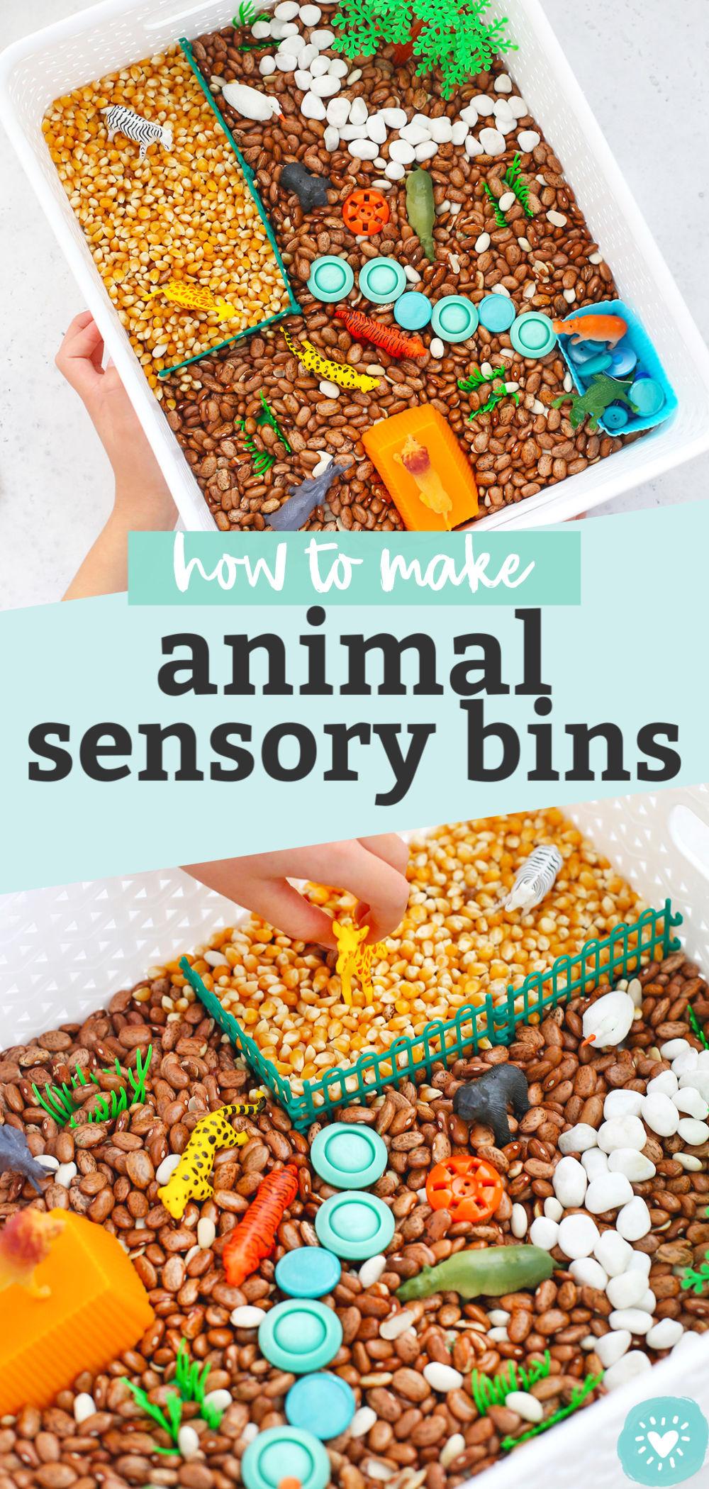 Animal Sensory Bin Tutorial +Lots of Ideas!