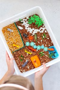 Animal Sensory Bin Tutorial +Lots of Ideas!