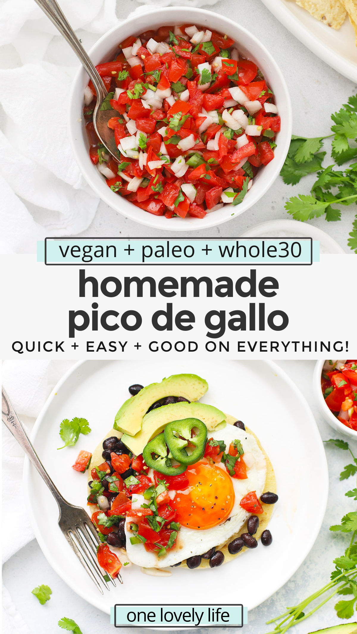 How to Make Pico de Gallo - You'll LOVE this fresh salsa recipe! It's perfect on tacos, burritos, quesadillas, nachos, and more! // Fresh Salsa Recipe // Authentic Pico de Gallo // Homemade Salsa // pico de gallo recipe #salsa #picodegallo #texmex #mexican