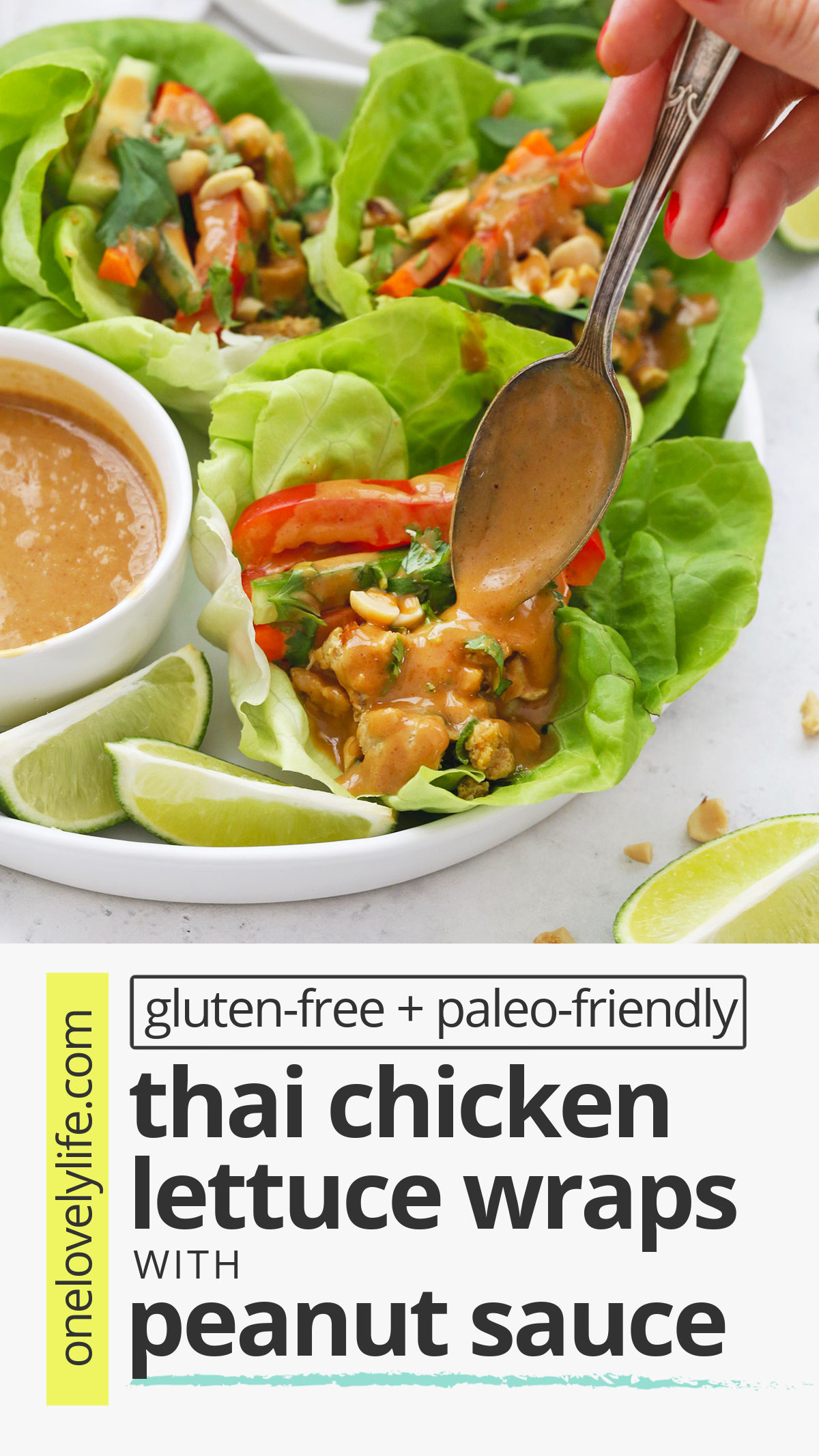 Thai Chicken Lettuce Wraps with Peanut Sauce - These Peanut Chicken Lettuce Wraps use flavorful chicken, crisp, fresh veggies, and THE BEST peanut sauce to make a delicious, easy dinner. // Peanut Lettuce Wraps // Easy dinner // Healthy Dinner #peanutsauce #lettucewraps #chicken #healthydinner #easydinner
