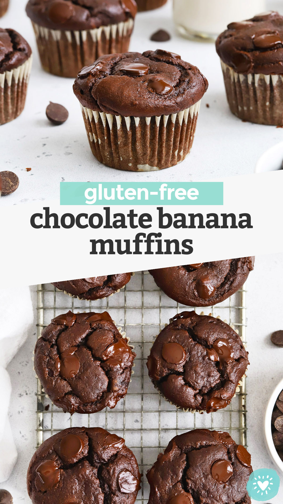 Gluten-Free Chocolate Banana Muffins - These gluten-free double chocolate banana muffins are light, fluffy, and loaded with ultra-chocolatey flavor. A favorite sweet treat that's easy to make any time! (Dairy-Free) // gluten-free chocolate chocolate chip muffins // gluten free banana muffins recipe #glutenfree #muffins #breakfast #snack #chocolate #banana
