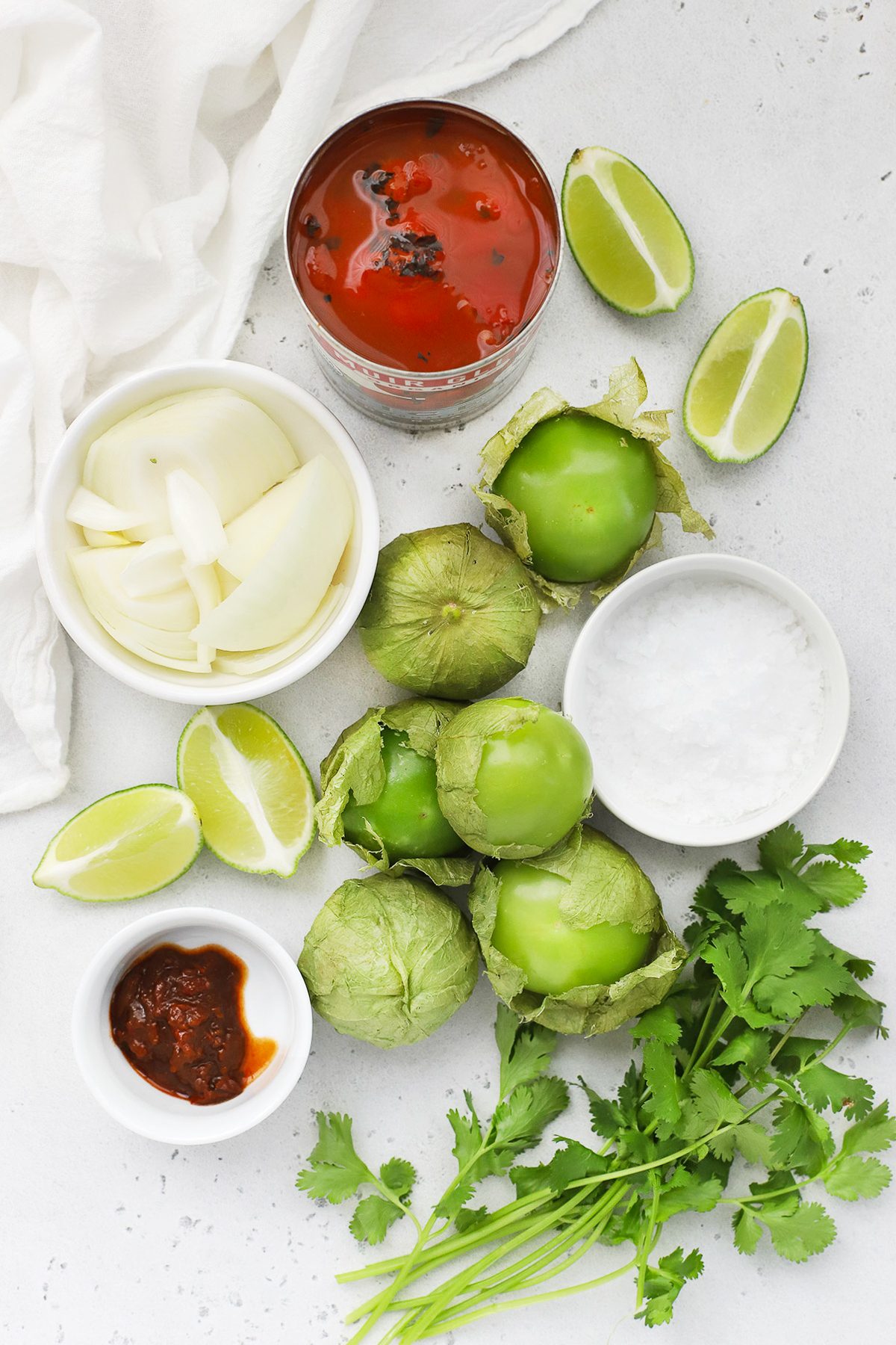 Overhead view of ingredients for chipotle salsa