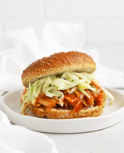 Front view of a slow cooker BBQ chicken sandwich on a white background