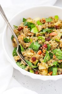 Front view of a bowl of healthy quinoa salad with apples and cranberries.