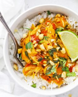 Close up overhead view of Healthy pumpkin chicken curry topped with crushed peanuts and fresh cilantro