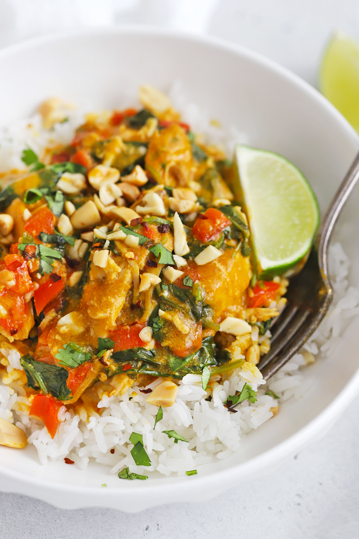 Close up view of Healthy pumpkin chicken curry topped with crushed peanuts and fresh cilantro